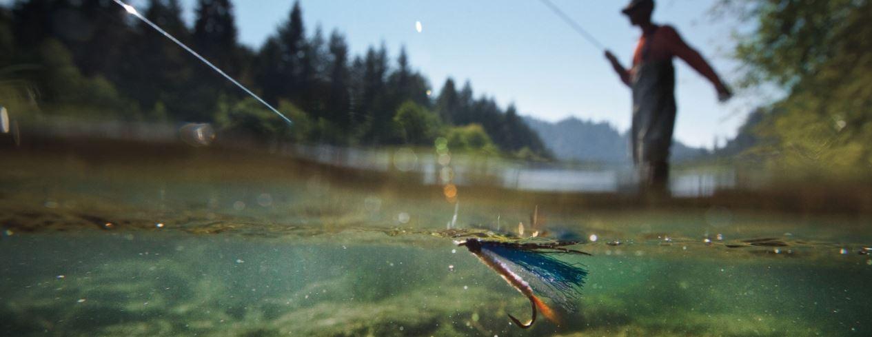 fly-fishing-head