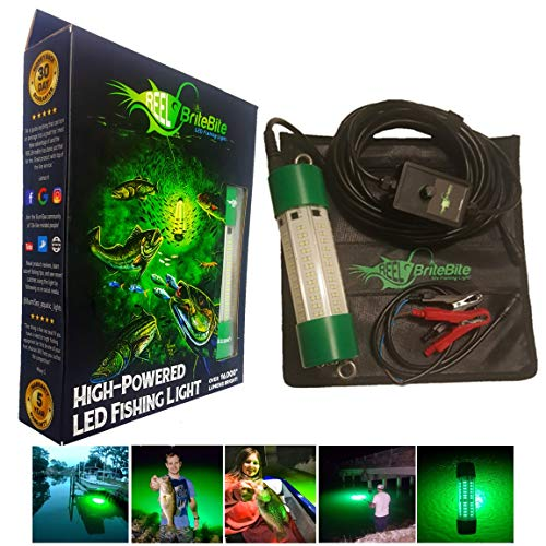 IllumiSea Aquatic Lights – 16,000+ Lumen Underwater LED Fishing Mild – Desire More Fish with The Reel BriteBite – Exercise with 12v-24v and 110v-250v (12-24v clamps ONLY (150w Green))