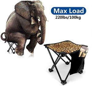 Animal Print Camping Chairs