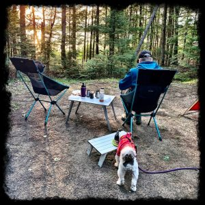 Dog Camping Chairs