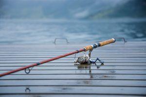 Feesh Stick Fishing Rods