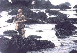 Poke Pole Fishing Rods