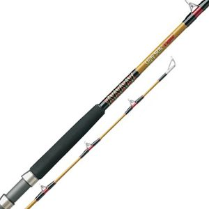 Shakespeare Tiger Fishing Rods And Reel