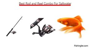 Surf Fishing Rods And Reel Combos