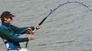 Tuna Fishing Rods And Reel