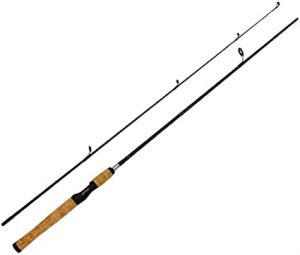 Two Piece Fishing Rods