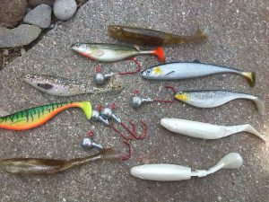 Rubber fish of different colors on stone
