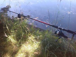 Beginner fishing tackle