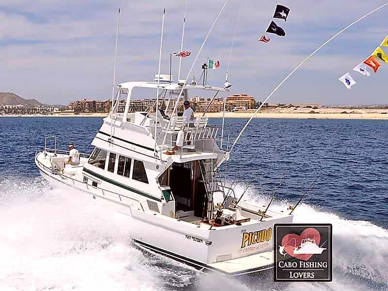Buy Fishing Boats in Mill Valley